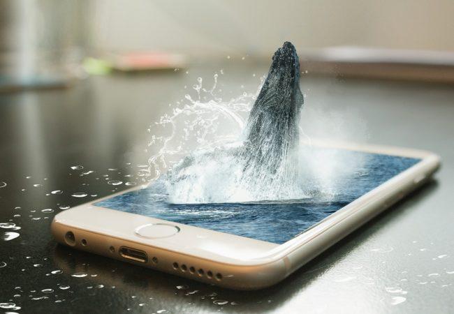 Je iPhone vodotěsný? Není!